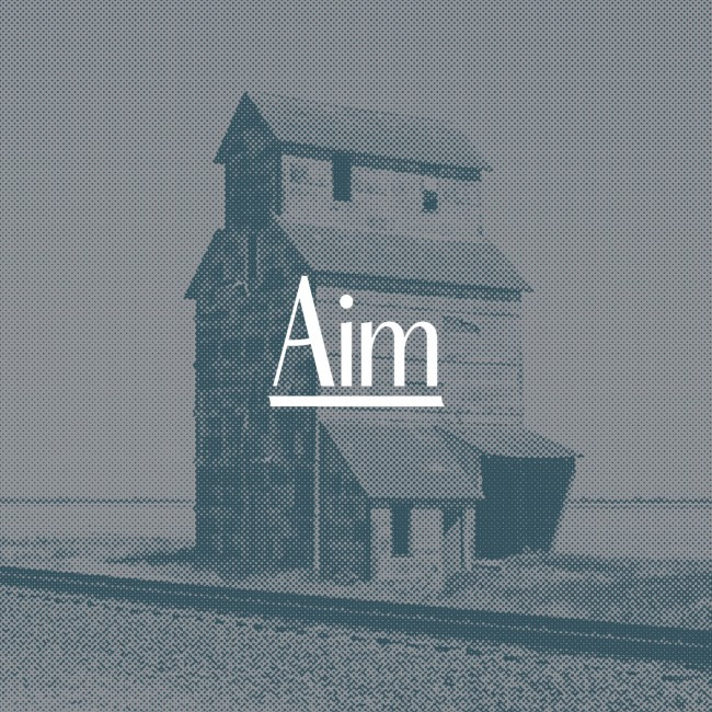 Aim-Image-3